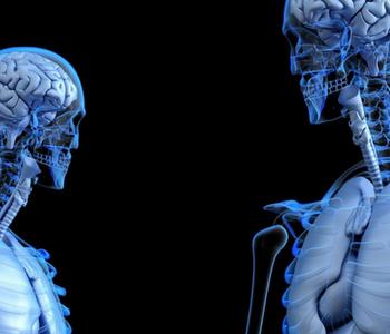neurociencia y dolores cervicales optimmus