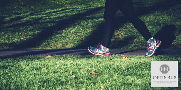 ejercicio suave optimmus